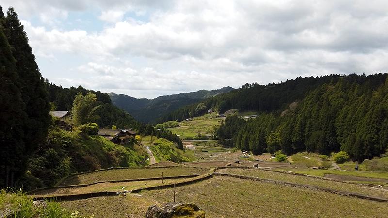 四谷の千枚田 休憩所からの景色